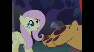My Little Pony:  Bondade