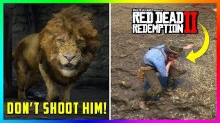 What Happens If You DO NOT Kill The Legendary Lion In Red Dead Redemption 2? (SECRET Outcome)