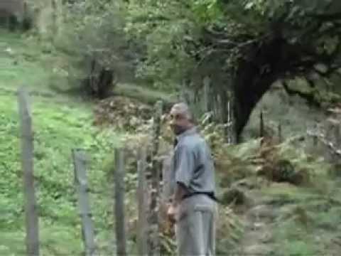 Talish Azerbaycan Astara Sim kendi operator Eldar Mikailov.