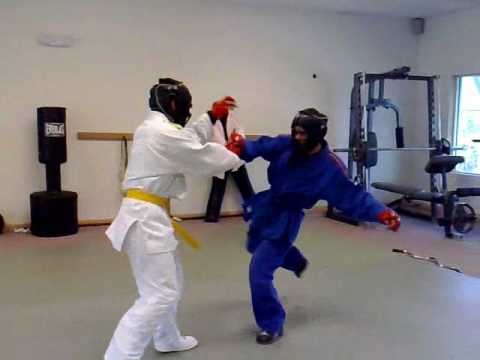 Combat Sambo Training Image 1
