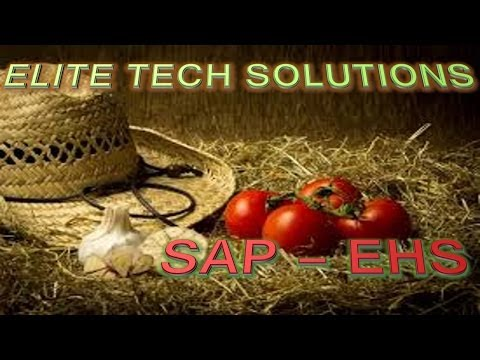 SAP EHS ( Environment, Health & Safety ) Online Training Demo P