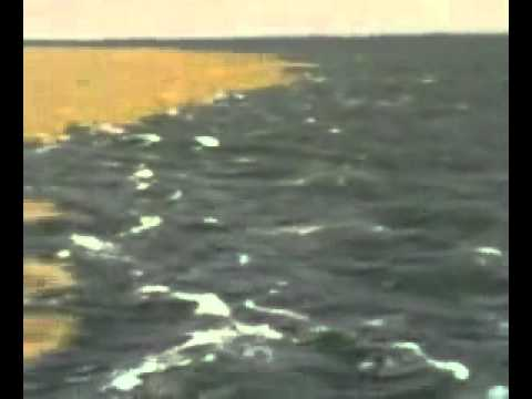 التقاء الماء العذب مع  الماء المالح  سبحان الله.FLV