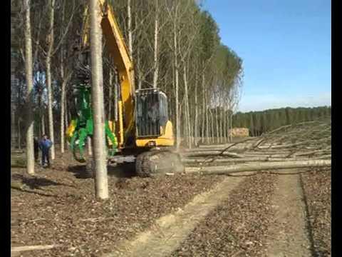 Grappin coupeur - tête d'abattage - grappin forestier - grappin à bois - matériel forestier