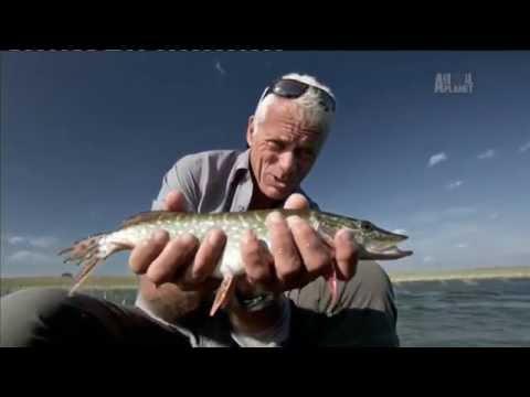 Опасная рыбалка - Чернобыльские монстры