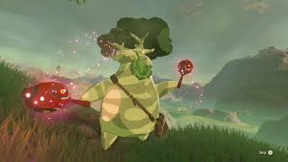 The Legend of Zelda Breath of the Wild - The Priceless Maracas: Increase Weapon & Bow Stash (2019)