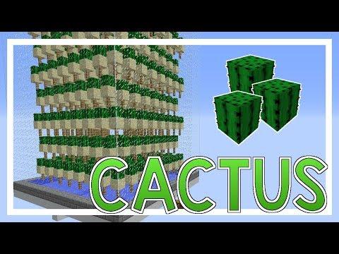Hoe maak je een CACTUS FARM? - Survival Machines