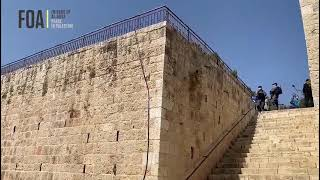 Video: Tour of Gate Of Mercy, Muhammad's companions grave site, Jerusalem - LoveAqsa