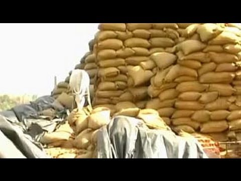 Foodgrain worth Rs. 250 cr rot in Maharashtra godown, state blames Centre