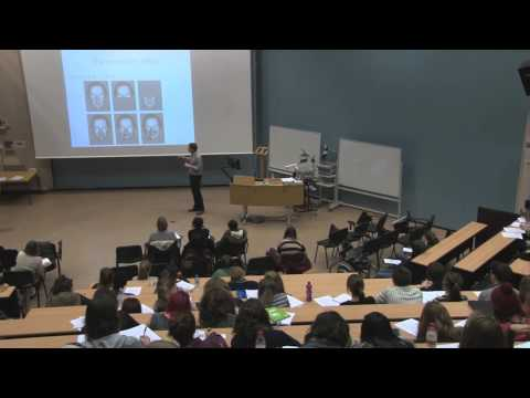 Part1 Cognitive Psychology: Dr Tom Foulsham
