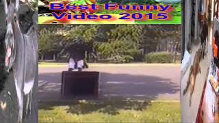 [Best Funny Fail video Funny fail 2015] Video