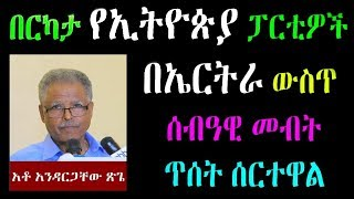 Ethiopia : በርካታ የኢትዮጵያ ፓርቲዎች  በኤርትራ ውስጥ   ሰብዓዊ መብት ጥሰት ሰርተዋል አቶ አንዳርጋቸው ጽጌ