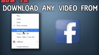 How to Download Any Video on Facebook! [HD]  - No Program Needed