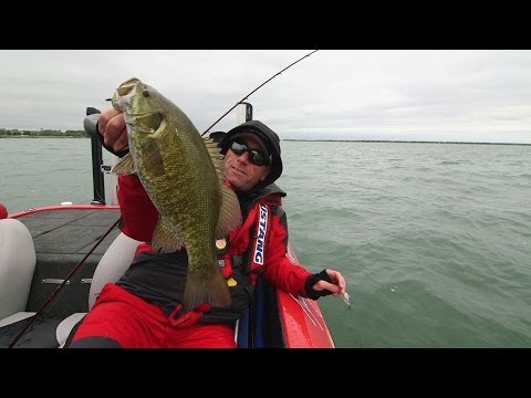 Casting Into the Wind for Livetarget Baitball Smallmouth - Dave Mercer's Facts of Fishing THE SHOW