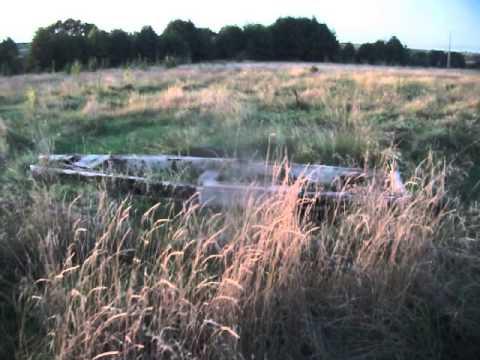 рязанская область шацкий район рыбалка на реке цна форумы