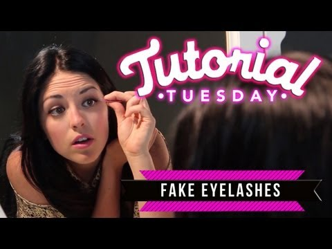 Fake Lashes: How to Apply Strip Lashes & How to Apply Individual Lashes!