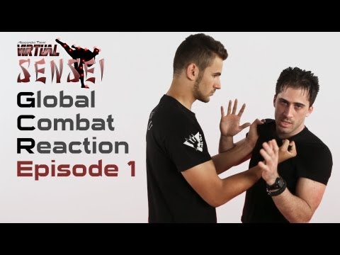 Ninjutsu self defense - Ep. 1 - Chest grab and roundhouse kick Image 1