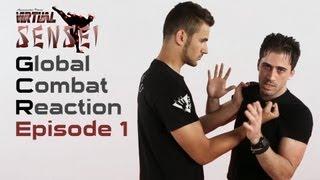 Ninjutsu self defense - Ep. 1 - Chest grab and roundhouse kick