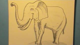 How to Draw an Elephant, Quickly