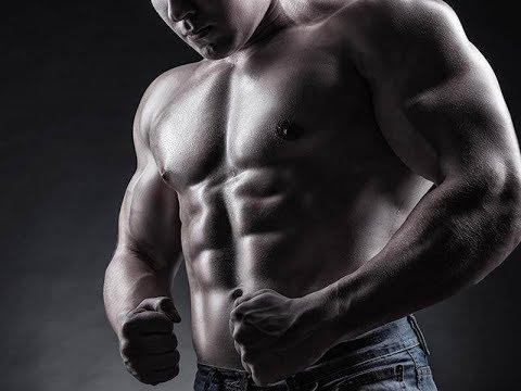 aminosäuren diät