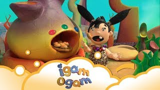 Igam Ogam: Don't touch S2 E17   WikoKiko Kids TV
