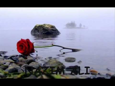 Hamara Hal Hum Kya Bataye video
