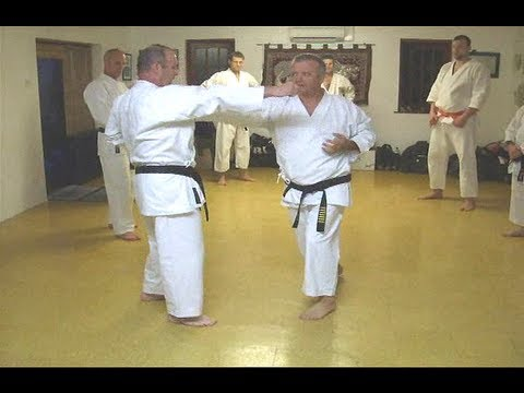 Tom Hill's Karate Dojo; Basic Blocking Techniques, Kihon Uke Waza Image 1