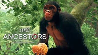 Ancestors: The Humankind Odyssey - Explore Trailer