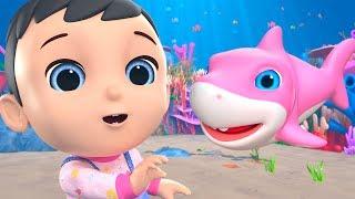 Baby Shark Song   Nursery Rhymes & Kids Songs - Little Treehouse