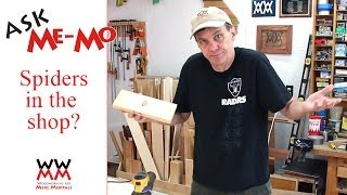 Are there spiders in your shop? | Ask Me-Mo