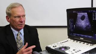 Scan-IQ® The Innovative Ultrasound Training Tool from Sound®