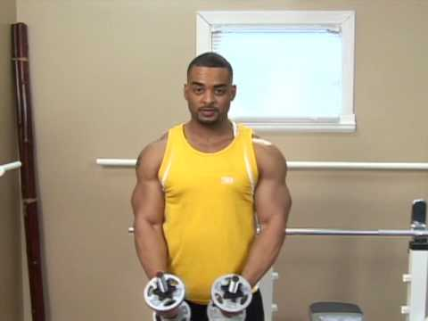 Bodybuilding Exercises : Bodybuilding: Lateral Raise Image 1