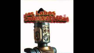 Watch Los Lobos Cant Stop The Rain video