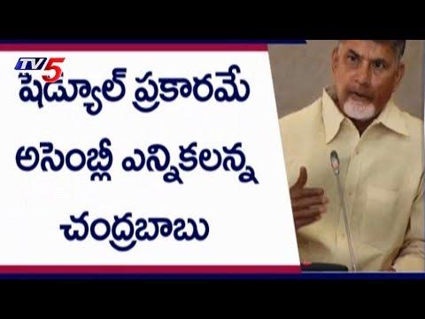 ముందస్తుపై చంద్రబాబు వ్యూహం | AP CM Chandrababu Naidu Focuses On Party Strengthen | TV5 News