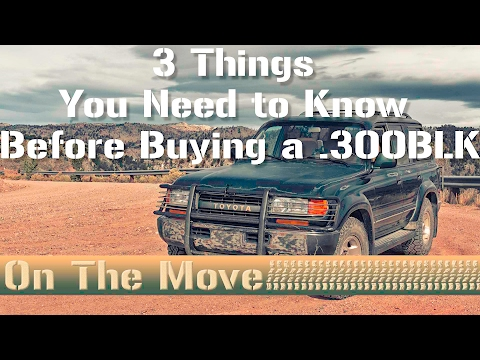 3 Things You Need to Know Before Buying a 300BLK - On The Move