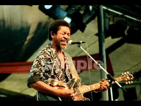 You've Been Teasin' Me - Luther Allison