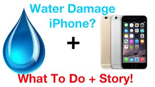 Dropped Iphone 6 In Water What To Do Story