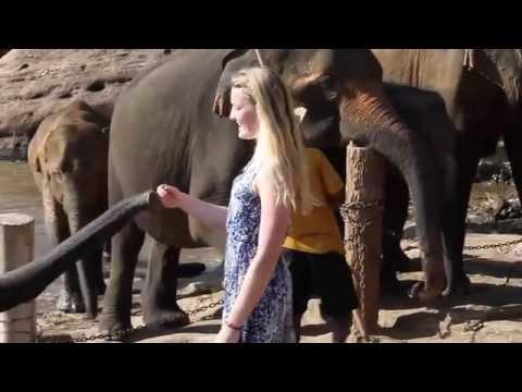 Exploring Sri Lanka with Iraq Wings Travel