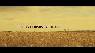 The Striking Field - Short Action Film