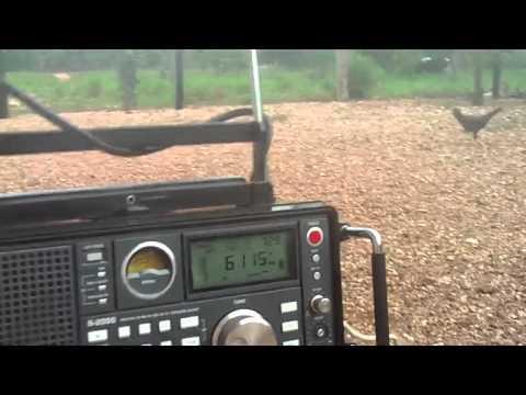 6115 kHz Radio Voice of Strait , in Amoy Language? , Fuzhou , Fugian , China
