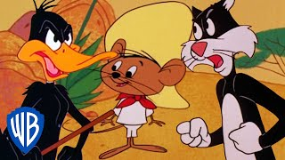 Looney Tunes | Best of Speedy Gonzales | Classic Cartoon Compilation | WB Kids