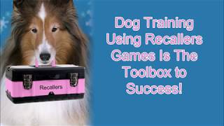 Dog Training Using Recallers Games Is Your Toolbox to Success