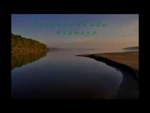 барнаул рыбалка на леща на оби