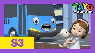 Tayo S3 EP19  I want a puppy l Tayo the Little Bus