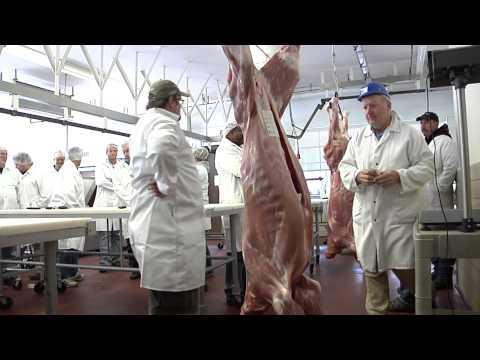 Penn State's 2011 Venison 101 Workshop
