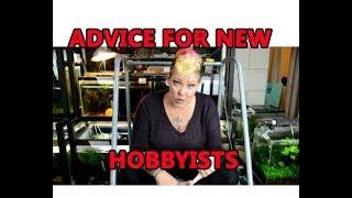 Jenna Marbles Got Fish! Advice for New Hobbyists
