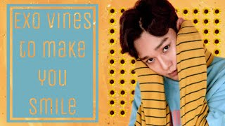 Exo Vines To Make You Smile Pt 11