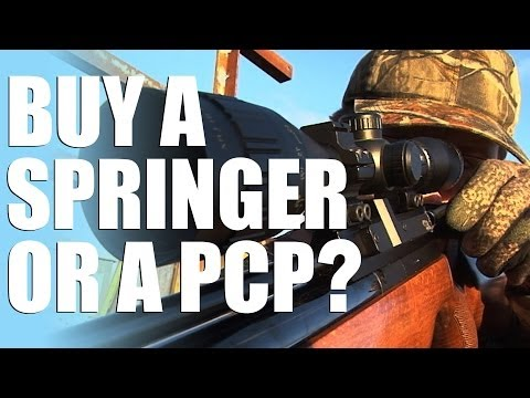 Should I buy a Spring Air Rifle or PCP?