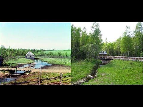 Заросшая Россия или когда деревья были детьми (100 лет прошло)