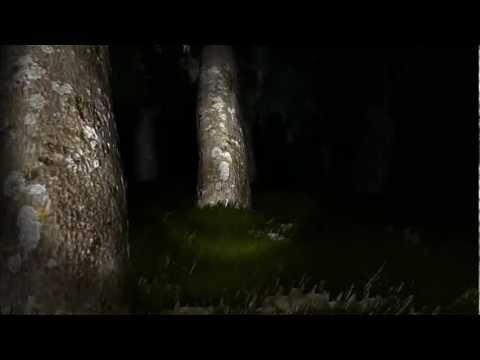 Op Channel 老皮實況台『快樂夥伴手電筒遊戲 Survivers Beta 3』! 音量注意XD