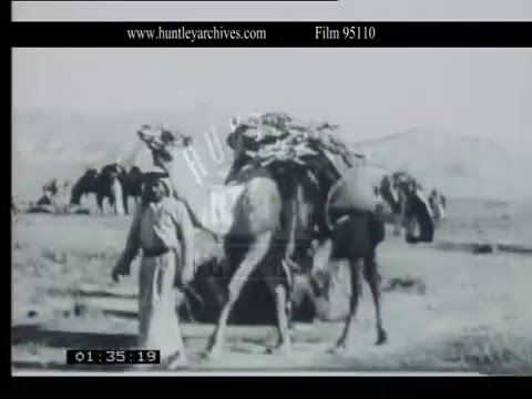 Bedouin Life in the Middle East, 1938 - Film 95110